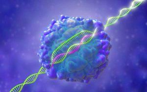 Công nghệ mới trong y học có thể chỉnh sửa 89% lỗi gen